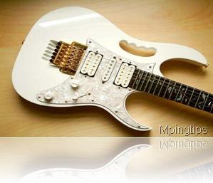 Trik Memilih Gitar